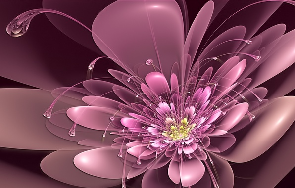 Picture flower, pink, neon, petals, art, antennae