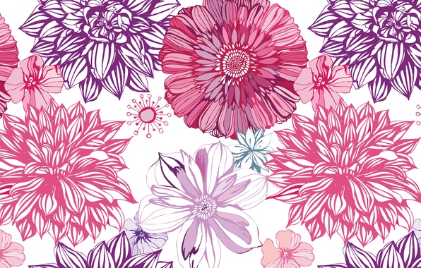 Picture figure, vector, art, buds, dahlias, asters