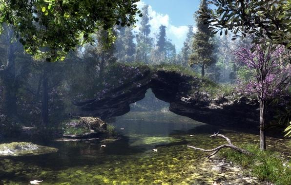 Picture trees, nature, lake, river, stones, rocks, branch, Sakura, art, Klontak