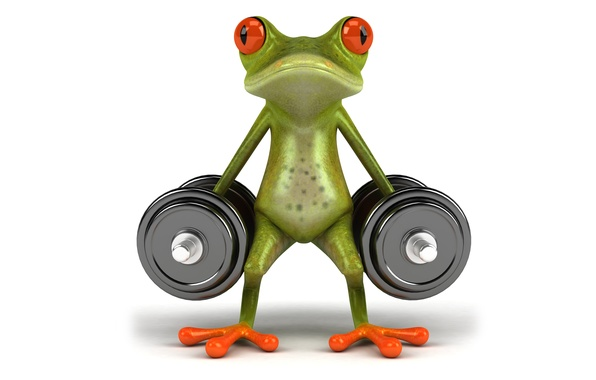 Picture sport, graphics, frog, dumbbell, free frog