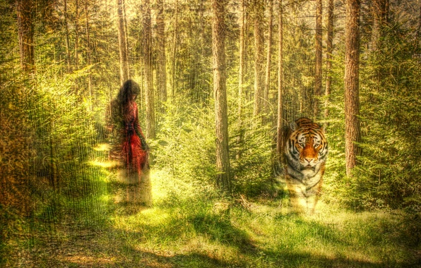 Picture forest, girl, tiger, style, texture