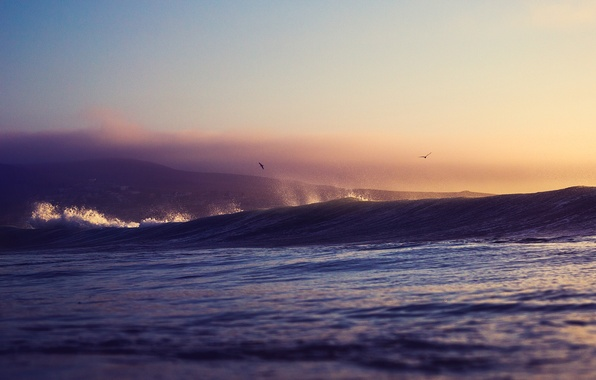 Picture sea, sunset, squirt, birds, wave, hill