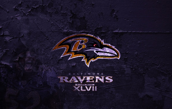 Picture wallpaper, sport, background, america, usa, football, american, purple, rice, lewis, nfl, 2013, Baltimore, Ravens, ray, …