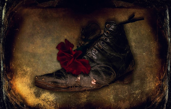 Picture flower, texture, scratches, shoes