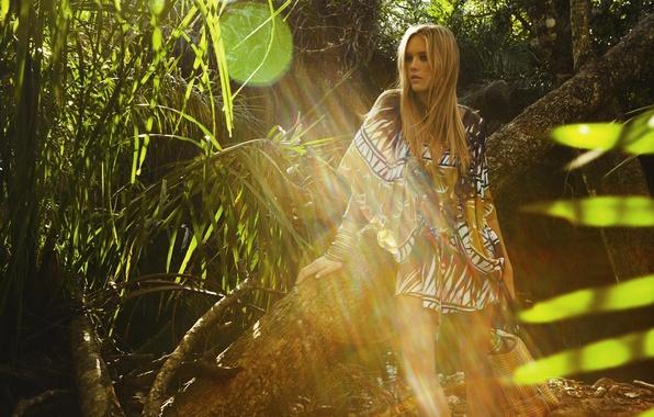Picture forest, girl, the sun, light, nature, tree, model, hair, dress, blonde, Gianne Albertoni