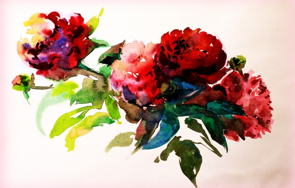 Picture flowers, paper, paint, figure, watercolor, painting, creativity, drawing