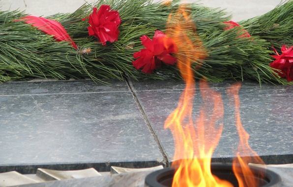 Picture flowers, memory, holiday, May 9, eternal flame, Victory Day, sacred