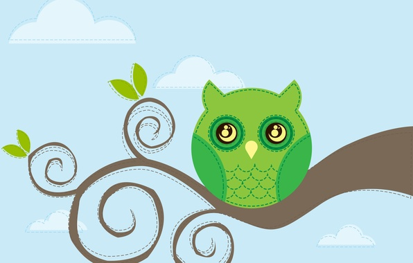 Picture the sky, owl, bird, branch