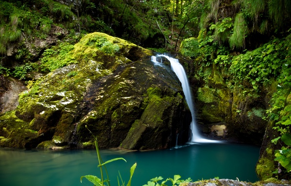 Picture greens, forest, stones, waterfall, moss, Croatia