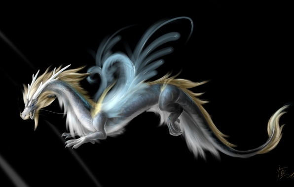 Picture look, face, fiction, dragon, wings, art, tail, horns, black background
