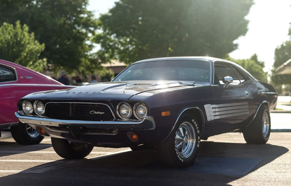Picture Dodge, Challenger, muscle car, 1973