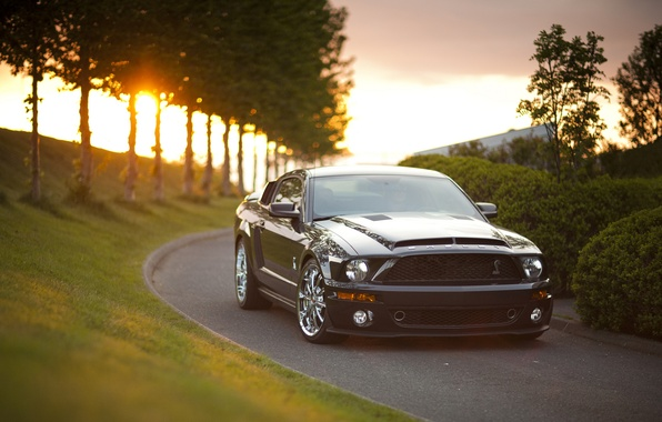 Picture road, machine, Mustang, Mustang, alley