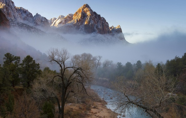 Picture winter, forest, trees, mountains, fog, river