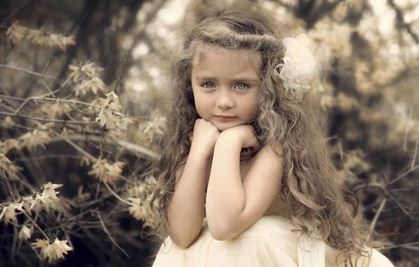 Picture portrait, girl, curls, curls