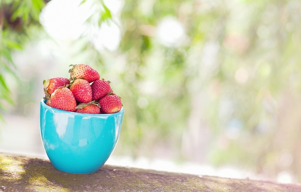Picture leaves, berries, background, widescreen, Wallpaper, food, blur, strawberry, berry, mug, Cup, wallpaper, widescreen, blue, background, …