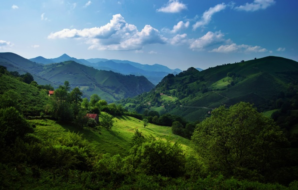 Picture greens, summer, the sky, grass, clouds, trees, hills, Spain, Asturias, The Cantabrian mountains