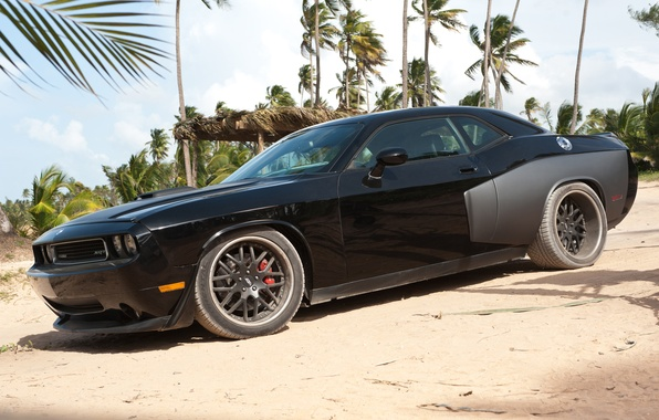 Picture beach, palm trees, the film, Dodge, Challenger, Fast and furious 5, SRT