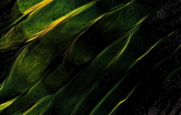 Picture color, green, black, divorce, texture