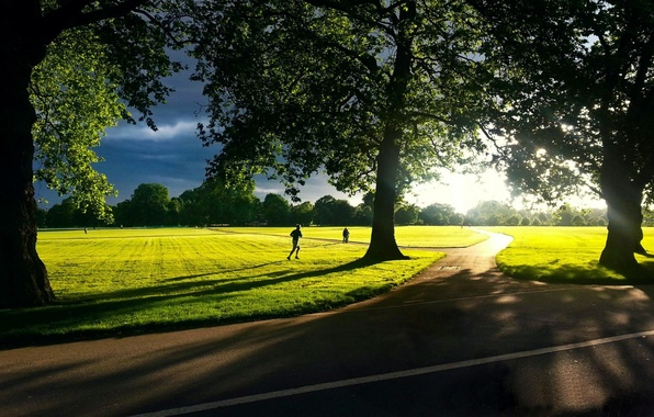 Picture greens, the sky, grass, the sun, trees, landscape, nature, background, movement, widescreen, Wallpaper, foliage, people, …