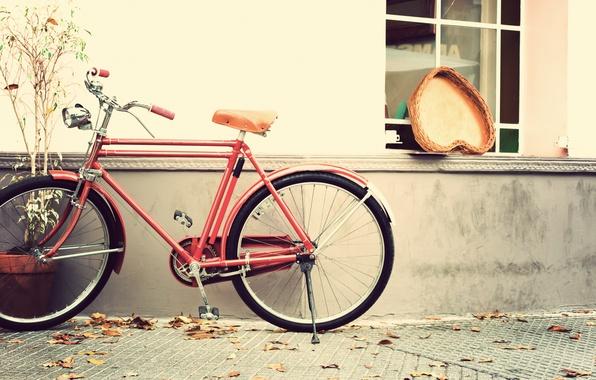 Picture bike, heart, love, vintage, heart, romantic