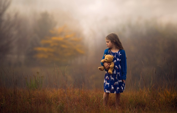 Picture autumn, nature, toy, girl