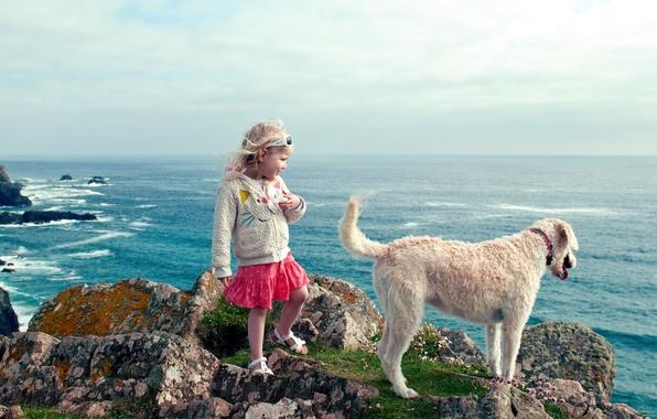 Picture sea, landscape, dog, girl