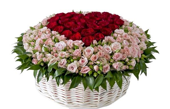 Picture flower, flowers, basket, roses, bouquet, basket