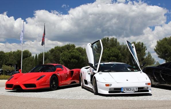 Picture Lamborghini, Ferrari, Enzo