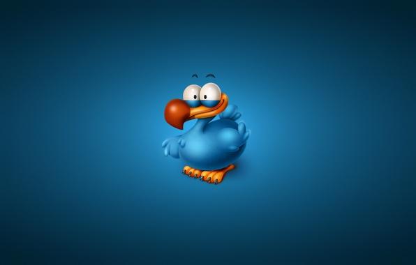 Picture bird, minimalism, blue background, Titto The Dodo