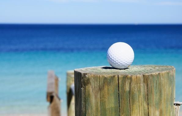 Picture golf, sea, club, golf ball