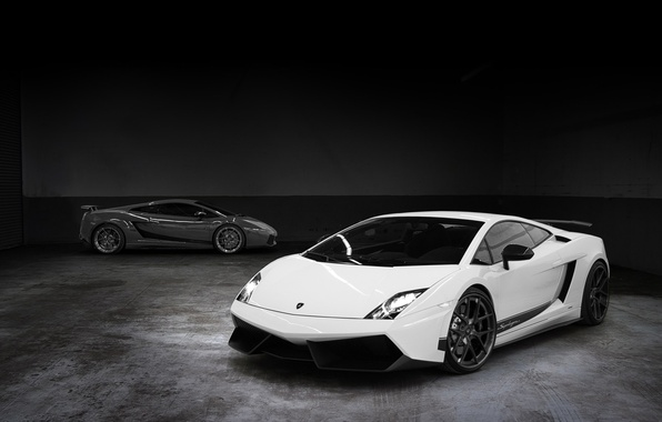 Picture white, grey, background, tuning, Lamborghini, supercar, Gallardo, twilight, Vorsteiner, tuning, Lamborghini, Gallardo