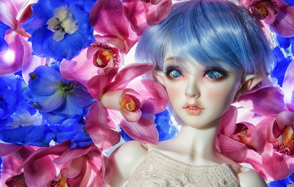 Picture flowers, elf, toy, doll, orchids