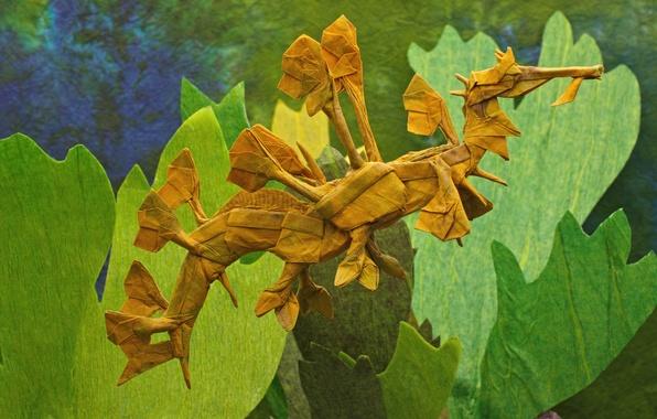 Picture paper, background, origami, Sea, horse-the ragpicker, Leafy Sea Dragon