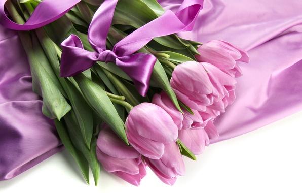 Picture purple, bouquet, tulips, bow, ribbon