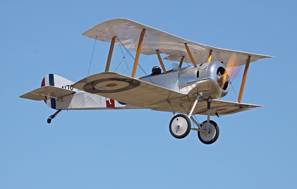Picture the plane, fighter, English, club, military, collection, historical, single, private, WWI, the first world war, …