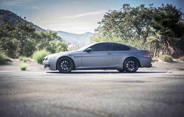Picture trees, grey, bmw, BMW, coupe, Matt, profile, wheels, black, grey, e63, matte, black rims
