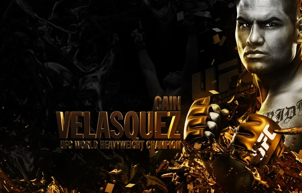 Picture fighter, fighter, champion, mma, ufc, Cain Velasquez, Cain Velasquez