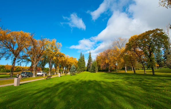 Photo wallpaper Park, trees, car, leaves, the sky, grass, autumn, clouds