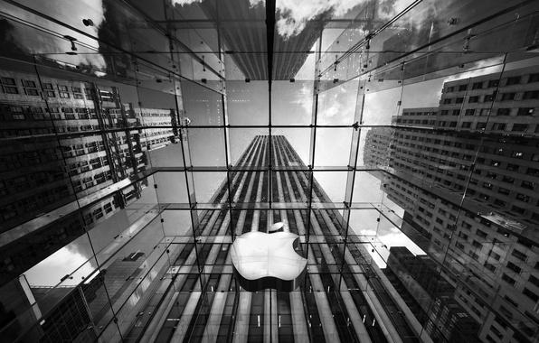 Picture Apple, black and white, logo, skyscrapers