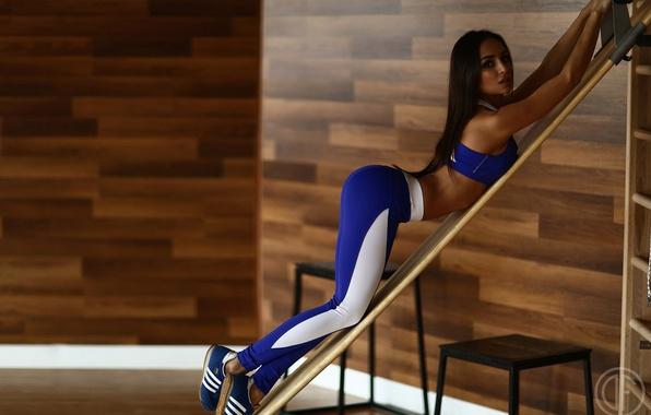 Photo wallpaper sculpted body, brunette, girl, sportswear, fitness