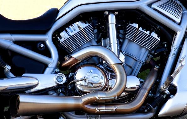 Picture pipe, frame, Harley Davidson, chrome, motor