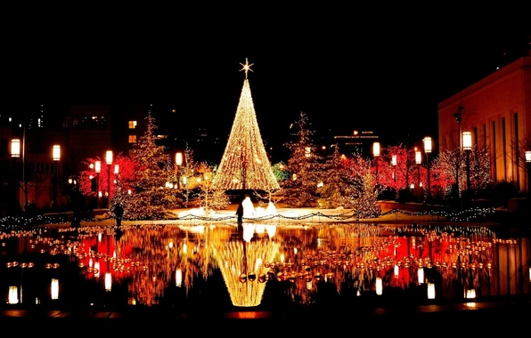 Picture water, the city, lights, reflection, area, tree, garland, night