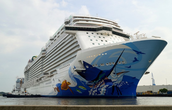 Picture liner, comfort, cruise ship