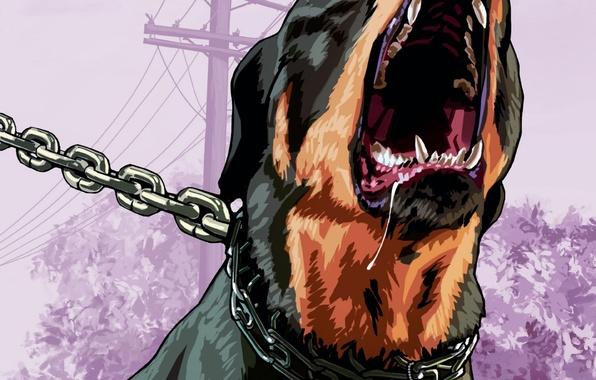 Photo Wallpaper Rockstar Dog Chop Grand Theft Auto GTA 5 Rottweiler