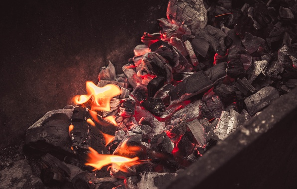 Picture nature, fire, wood, coal, grill