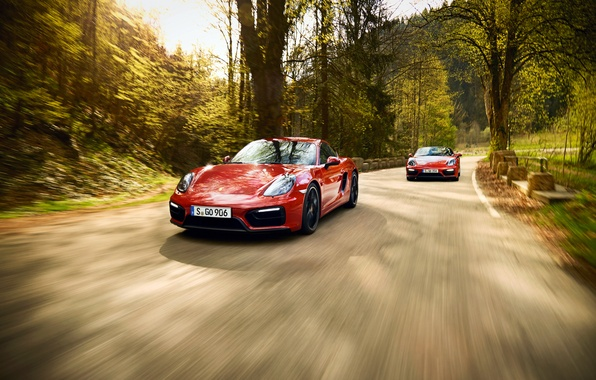 Picture 911, Porsche, Carrera 4, Porsche, Coupe, GTS, 991, Carrera, 2014