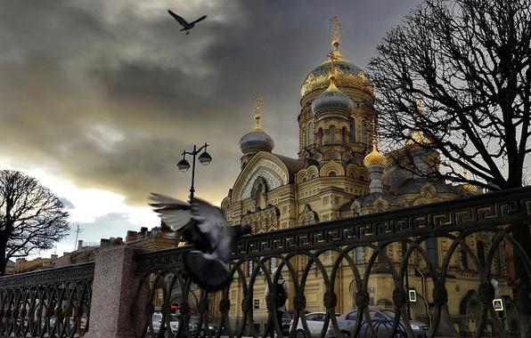 Picture Saint Petersburg, The Trinity-Sergius Lavra, Vasilievsky island