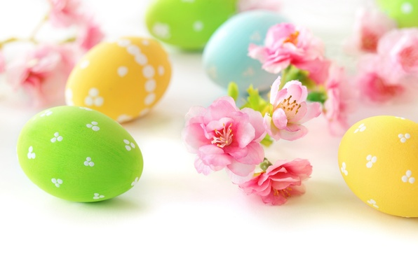 Picture flowers, eggs, Easter, flowers, spring, Easter, eggs