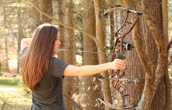 Picture forest, woman, archery, compound bow