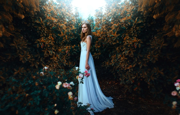 Picture girl, style, mood, roses, dress, Diadema, the bushes
